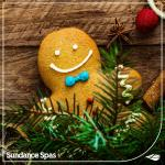 Merry Christmas from The Sundance Spa Store!